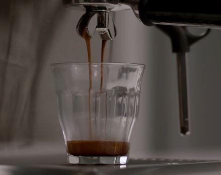 duo temp pro coffee